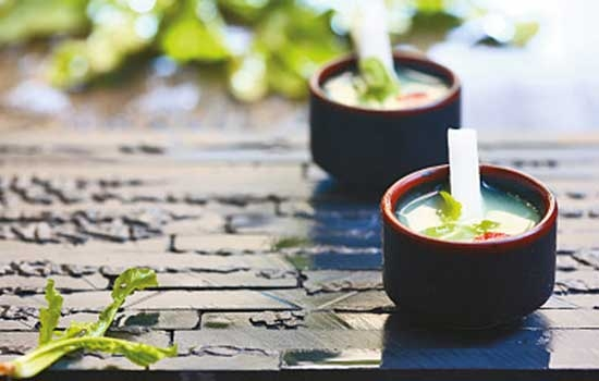 春天必吃的4种野菜 这样吃身体更健康