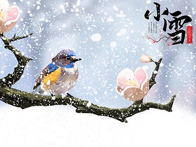 小雪节气的天气特点