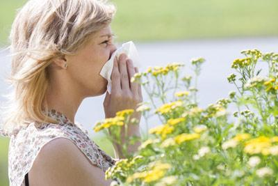 又到花粉过敏季,远离鲜花还会花粉过敏?