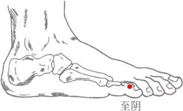 至阴位置图和作用 至阴位置与主治